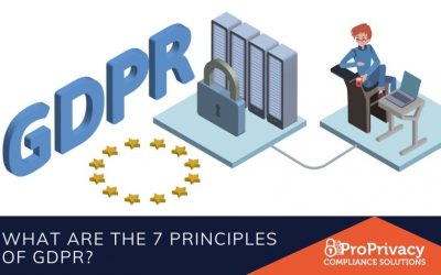 What are the 7 principles of GDPR?