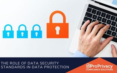 The Role of Data Security Standards in Data Protection
