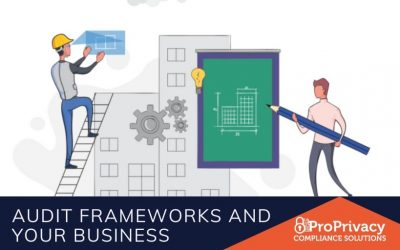 Audit Frameworks and Your Business
